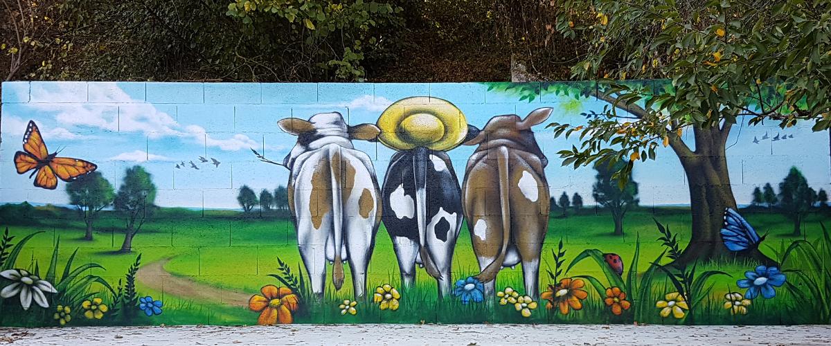 Decoration Murs Peinture Aerosol Déco Graff Graffiti